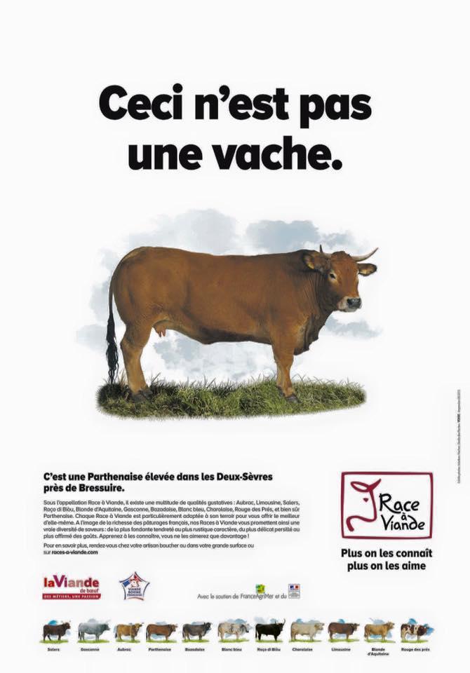 pas-vache.jpg